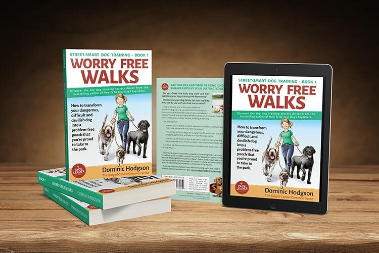 Worry Free Walks