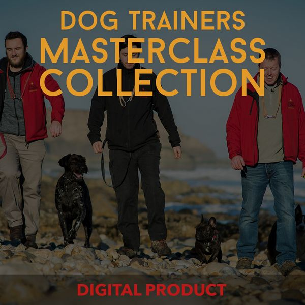 Dog Trainers Masterclass